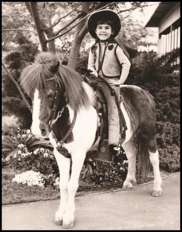 little-horse2